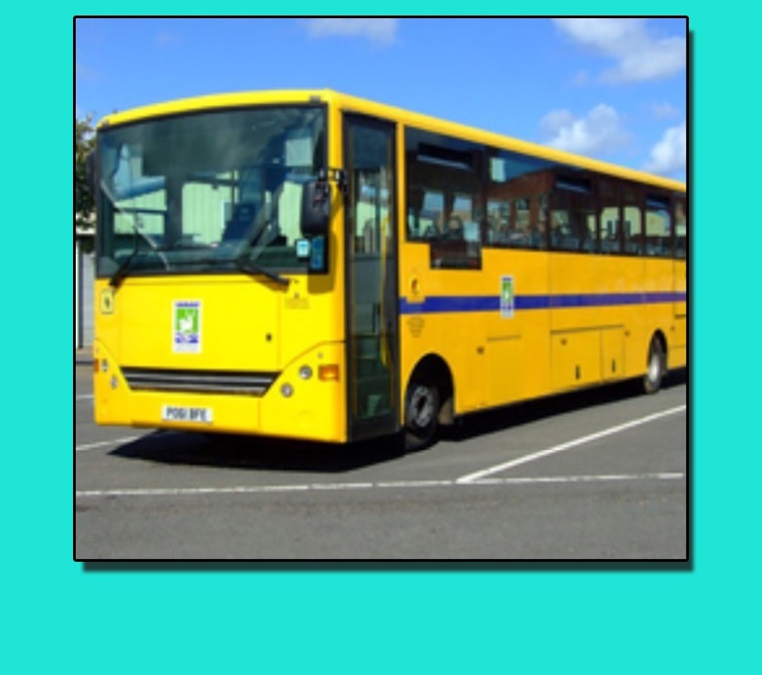 Image for School Bus for Year 10